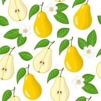 Vector de dibujos animados de patrones sin fisuras con pyrus o pera frutas exóticas, flores y hojas sobre fondo blanco.