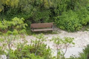 banco de madera vacío entre los árboles verdes foto