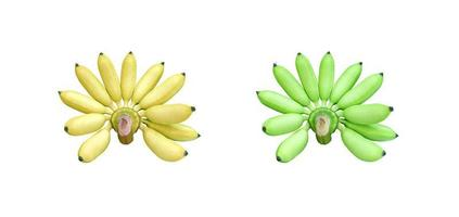 Many yellow and green bananas isolated on white background photo