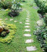 Stone path walkway in green grass garden photo