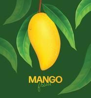 mango fresco con rodajas y hojas ilustración vector