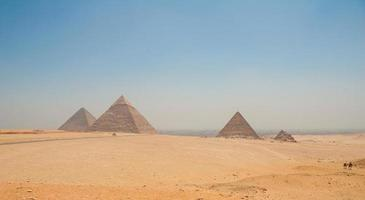 Pyramids of Giza, Cairo, Egypt and camels in the foreground photo