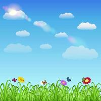 grass with flowers, butterflies and ladybugs with sky vector