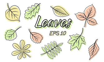 Collection of green leaves. Leaves of different shapes. Carved leaves. Silhouette. vector