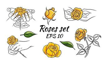 Set of patterns with roses. Roses in hands, buds, leaves. Yellow roses. Vector illustration isolated.