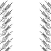 conjunto de borde de marco de boca de dragón vector