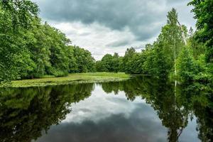 Hermosa vista de verano cruzar un estanque en Suecia foto