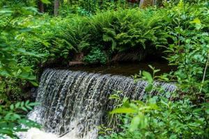 Small waterfall surrounded by lush green vegetation photo