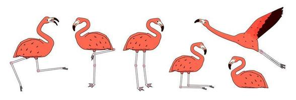 Set of Vector outline cartoon pink peach flamingos isolated on white background. Doodle animal is active, dancing, flies, rejoices, sleeps, rests, relaxes, dreams, walks. Different poses illustration