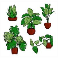 Vector collection of potted houseplants in a flat cartoon style. A set of elements for decorating your home, room or office. Isolated elements on a white background.