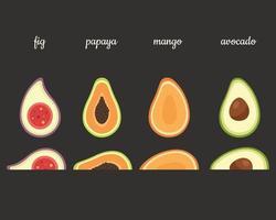 Exotic fruits fig, papaya, mango, avocado. Vector illustration