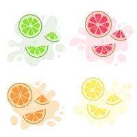 Fruits splash. Exotic and tropical fruits lemon, lime, orange, grapefruit. Vector illustration