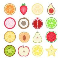 Fruits halves set. Tropical and exotic fruits. Vector illustration