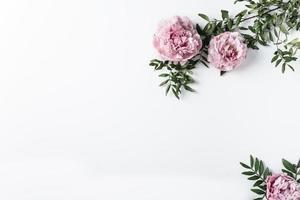 vista superior de claveles rosados foto