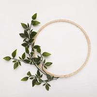 Wooden circle frame with green artificial leaves on white backdrop photo