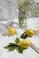 limones en manta de picnic foto