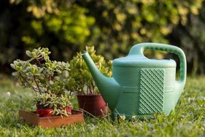 Watering can in the garden photo