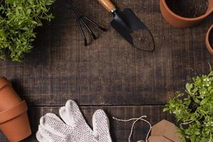 Plants gardening tools close up frame photo