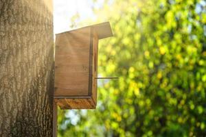 una casita para pájaros hecha de madera contrachapada en un tronco de árbol grueso foto