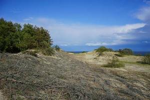 paisaje natural con vistas a las dunas de arena, foto