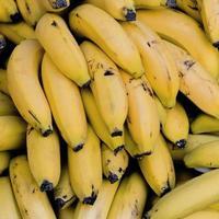 Pile of bananas photo