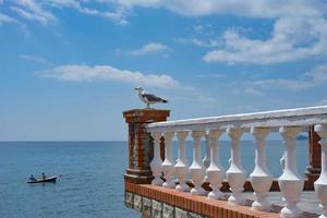 A large Seagull sits on a stone balcony against the blue sea. photo