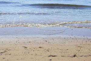 Seashells on sand. Sea summer vacation background photo