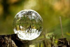 A lens ball in an autumn forest photo