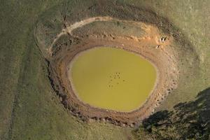Drone aerial photograph of a large livestock water reservoir with ducks and sheep photo