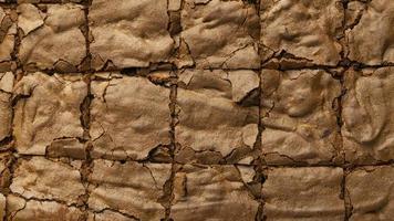 Brownie squares sliced photo