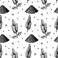 Quinoa seamless pattern. Vector illustration in sketch style