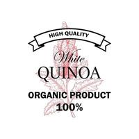 Quinoa vintage logo with hand drawn element. Vector illustration in sketch style