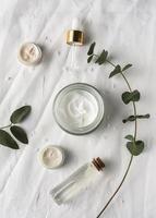 envase de crema para la piel de vista superior con planta foto
