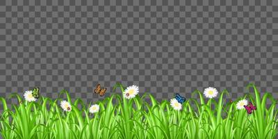 grass, flower and butterfly on background vector
