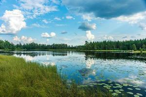Vista de verano de un pequeño lago en la campiña sueca foto