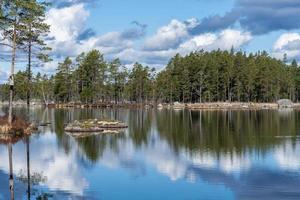 Vista de verano de un lago de pesca en Suecia foto