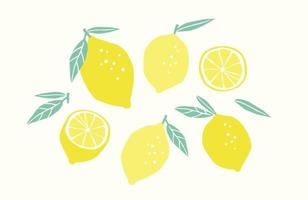 Set of drawn lemons. Citrus fruits, lemons, limes. Vector illustration. Isolated elements