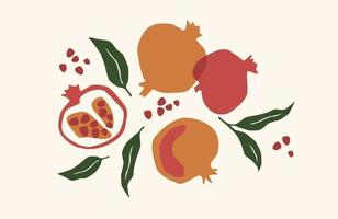 Set of drawn pomegranate, Vector illustration. Isolated elements