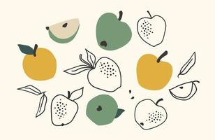 Set of drawn apples, Vector illustration. Isolated elements
