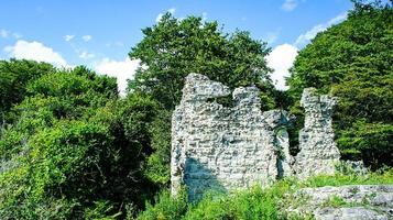 paisaje natural con ruinas en el fondo de los árboles. foto