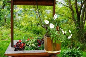 Rural landscape with flowers in a wooden bucket photo