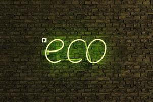 letrero de luz de neón con la palabra eco foto