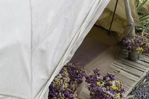Flowers and a tent photo