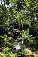 Small waterfall in a garden photo
