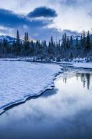 Early morning at a creek near Canmore Alberta Canada photo