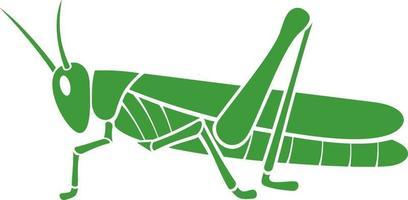 saltamontes verde- langosta vector
