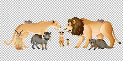 Group of wild african animals vector