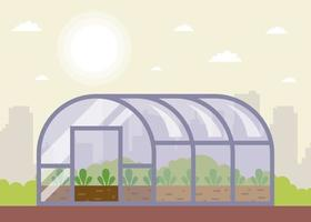 seedlings planted in the greenhouse in spring vector