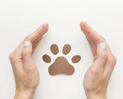 Top view of hands protecting paw print for animal day photo