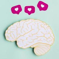 forma de cerebro de papel vista superior foto